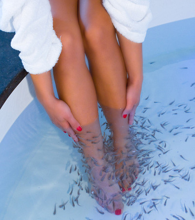 Co o tym s dzicie pedicure garra rufa spa z rybkami 7 for Fish pedicure dc