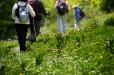 Hiking alternatywą dla biegania