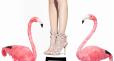 Bajeczne buty Sophii Webster