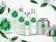 Fuji Green Tea od The Body Shop